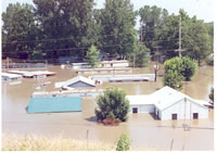 1993 flood - homes and business lost