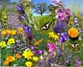 Spring flowers - It is on it's way..