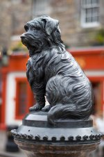 bobby statue - Greyfriars Bobby