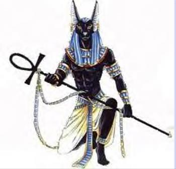 Anubis - Straight from Egypt!