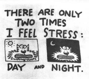 Stress Cat Cartoon - A 1 v1 catoon of when do you get stressed