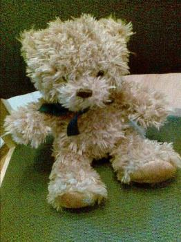 Alfie bear - Alfie bear. I've adopted him now.