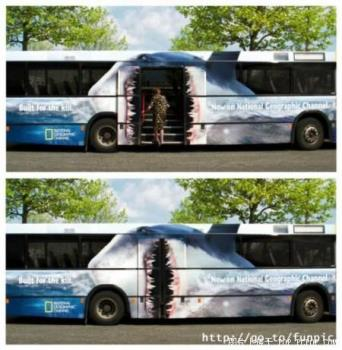 Jaws - bus Jaws