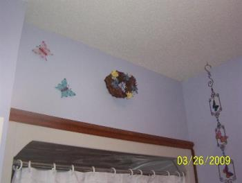 Just above the shower curtain - Here's the butterflies that I cut off a stick that was to be put outside as a decoration but I used wire cutters to cut them off and hung them on the wall! And the butterfly wind chime that I bought too.