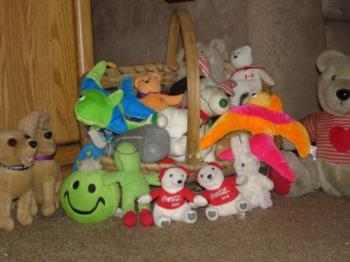 Pets toys - Do we have enough?