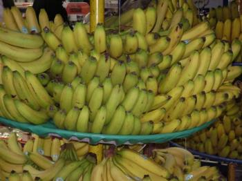so many bunches of bananas . - so many bunches of bananas in market for sale.