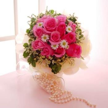 Pink - roses - Pink Roses - My Favourite