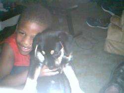 son holdin dog - chico