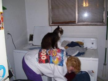 Me and Fluffy - Fluffy decided my back was the perfect perch while I was putting clothes in the dryer.