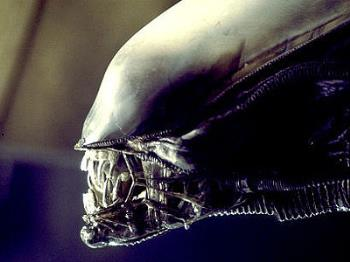 xenomorph - from the movie alien