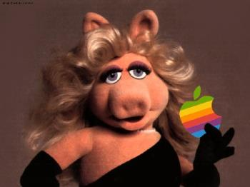 Miss.Piggy - Isn't she lovely?