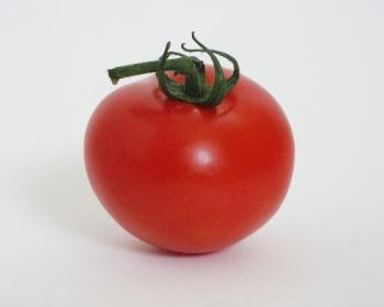tomato - Tomato is considered as both fruit and vegetable..