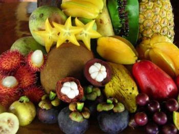 much fruit  - an array of fruits