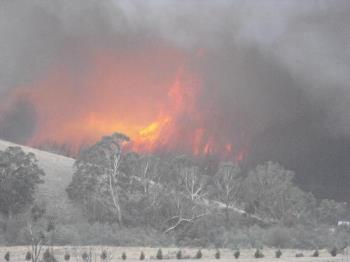 Fire - Victorian bush fires