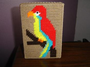 Trinket Box - Parrot trinket box made with plastic canvas and yarn. Good place to store little items.