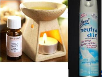 Aromatherapy burner and Lysol Neutra Air - Some products to use to eliminate unwanted odors in the house.