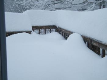 Deck at 10:00 a.m. - The snow is still coming down hard but I wanted to show you what we got so far.
