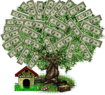 money tree - this is all we call the best tree.