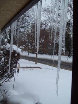 today's icicles - This taken out my door this afternoon. It is still snowing!