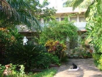 Garden - My dream Home
