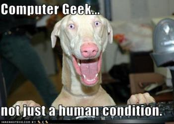 computer geek - just funny dog XD