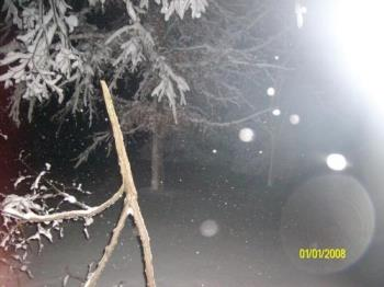 Broken branch in storm - Middle of the night picture taking of a broken branch from the Feb 2010 winter storm.
