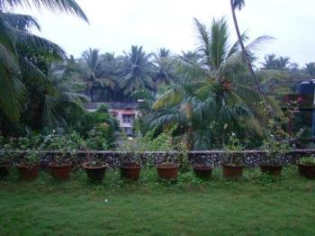 Terrace view - My terrace has a lawn which adds coolness to the place below.
