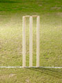 Cricket - The Stumps - The stumps are displayed in this Photo. It symbolises the game of cricket.
