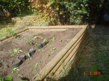My raised beds - I am preparing my raised beds to see if I can get a Winter crop if I cover them.