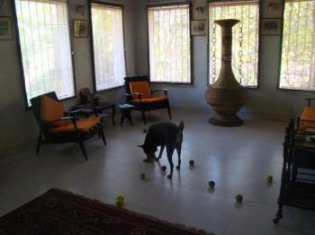 Preiti with her toys - Our hall becomes a playground for Preiti specially later evenings.
