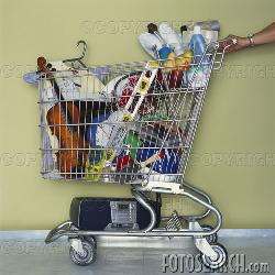 Full Shopping Cart - Full shopping cart