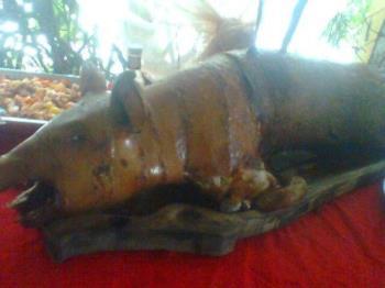 Pig lechon - No I don't eat pig lechon.