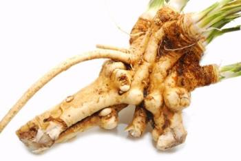 horseradish - this type of horseradish is availabe in our market