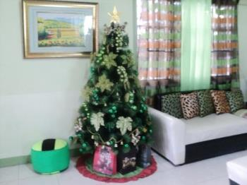 Christmas tree  - Christmas decors bring joy.