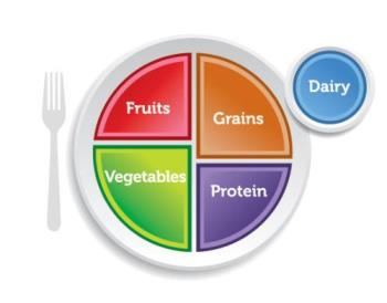 Healthy eating plate - A cute and silly way to know how much to eat!