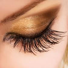 eyelash - A nicely-mascaraed eyelash