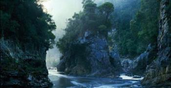The Franklin River - Birthplace of the Australian Greens