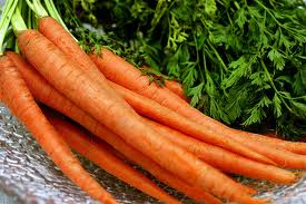 I eat raw carrots when I`m very hungry - I eat raw carrots when I`m very hungry because I wont gain weight with them. They are healthy