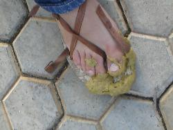 cowdung - yuck. Cow dung on my friends slipper