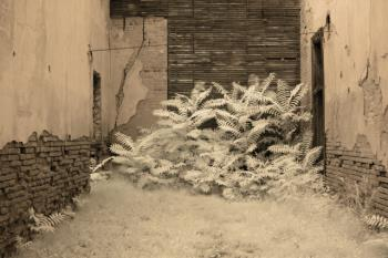 Infrared photo of an old building in Jerome, AZ