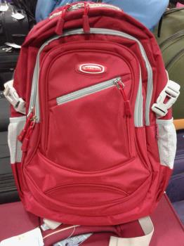 The Backpack i bought for the gift.