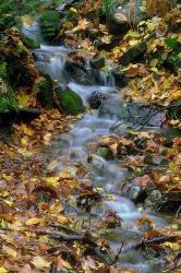 river - river