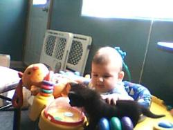 kitty, baby and tiny - gh