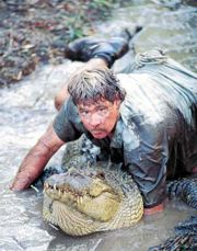 """Steve Irwin - In 1992, Irwin married Terri Raines from Eugene, Oregon, United States. The pair had met a few months earlier when Raines had visited the zoo on a holiday. Said Terri at the time, """"I thought there was no one like this anywhere in the world. He sounded like an environmental Tarzan, a larger-than-life superhero guy."""""""