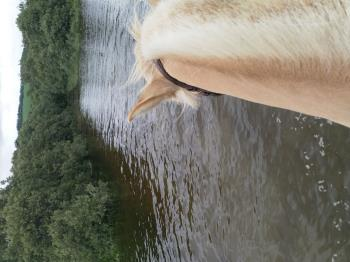 Riding in the water