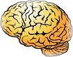 BRAIN - NICE 2 HAVE ONE FR FRY,.....