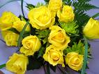 yellow roses - yellow roses