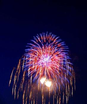 firework - this is one of my favorite kind of fireworks , and this picture captures it quite good