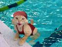 Cat Swimmer - From Eric's Funny Pics site