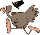 The turkey is trying to get away - run turkey run